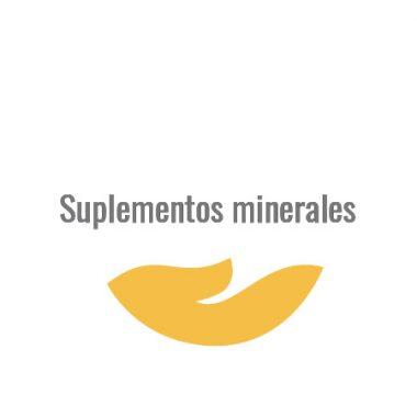 Suplementos minerales