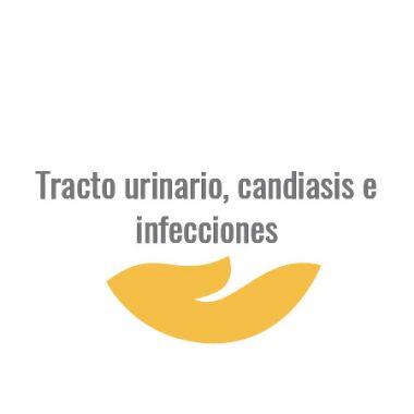 Tracto urinario, candiasis e infecciones